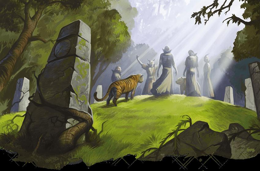 Druid 101: Wild Shape Guide - Posts - D&D Beyond