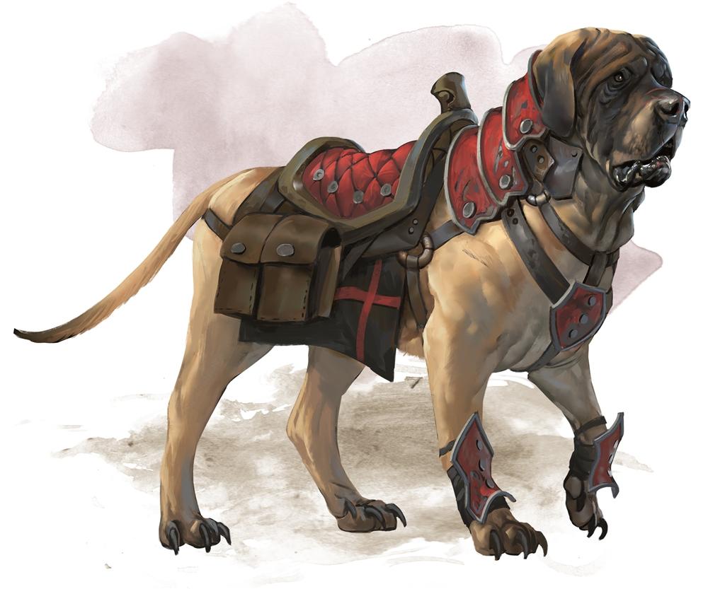 d&d riding dog