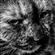 IchiSkaar's avatar