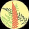 CeriseFern's avatar