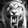 Grayfax's avatar