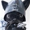 Robococoa's avatar