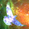 Rejoicer's avatar