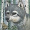 Foalan2003's avatar