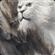 squallss's avatar