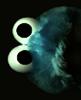 TheCookieMunchster's avatar