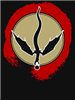 Ki11erwo1f's avatar