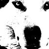wlfsamurai's avatar