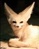 FoxfireInferno's avatar