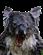Klatus's avatar