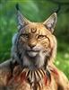 Talizzar's avatar