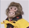 TheoGB451's avatar