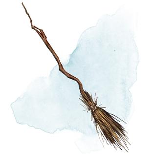 Broom of Flying